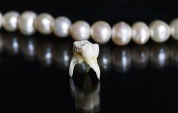 Den dåliga tanden drog och ställningar mitt emot kontoren av speglarna Royaltyfri Foto