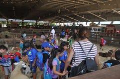 Den dalta zoo på LANTGÅRDutställningen på den Los Angeles County mässan i Pomona Royaltyfri Foto