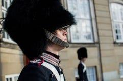 Den danska kungliga vakten royaltyfria bilder