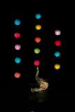 Den dekorativa elefanten spelar med bollar i luften Royaltyfri Bild