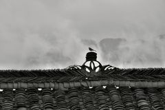 Den dekorativa kanten av det gamla kinesiska huset med den lilla fågeln som placerar på den Royaltyfri Fotografi