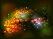 Den dekorativa Sakura filialen med grupper av blommor för den felika nattbakgrunden med stjärnor och blänker Vektor Eps10 Royaltyfri Bild