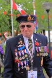den dekorerade veteran kriger Arkivfoton