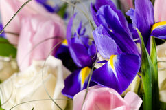 Den delikata härliga buketten av irins, rosor och annan blommar Royaltyfria Bilder
