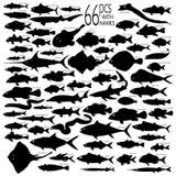den detaljerade fisken silhouettes vectoral Fotografering för Bildbyråer