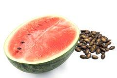 den detaljerade vattenmelon, kärnar ur Royaltyfria Bilder