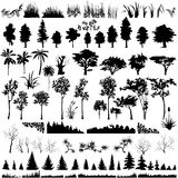 den detaljerade växten silhouettes den vectoral treen Royaltyfria Foton