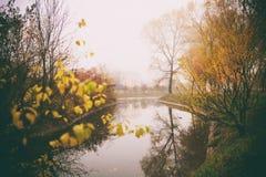 Den dimmiga dimmaskogen i Vitryssland parkerar vid floden, guld- höstfolliage Arkivbild