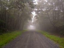 Den dimmiga morgonen g?r arkivbilder