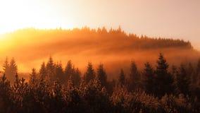 Den dimmiga morgonen i bergen med den första solen strålar Panorama- skott i varma färger arkivfoto