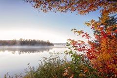 Den dimmiga morgonen i provinsiell Algonquin parkerar, Ontario, Kanada Fotografering för Bildbyråer