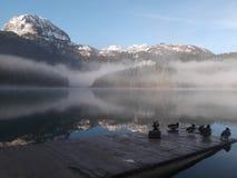 Den dimmiga morgonen på sjön Royaltyfri Fotografi