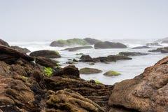 Den dimmiga stranden med vaggar och mist Arkivfoto