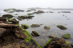 Den dimmiga stranden med vaggar och mist Royaltyfri Fotografi