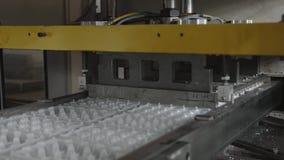 Den disponibla matpacken ware produktionsanläggningen, äggbehållareproduktionslinje stock video