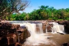 den djupa skogen lokaliserade paradistattonvattenfallet Arkivfoto
