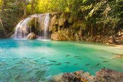 Den djupa skogvattenfallet på den Erawan vattenfallet lokaliserar i nationalparken Kanjanaburi Arkivbild
