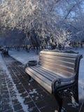 Den djupfrysta bänken i en stad parkerar vinter Royaltyfria Foton