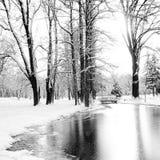 Den djupfrysta sjön i en vinter parkerar Arkivbild