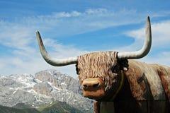 den djura tjuren like välfyllda yak Royaltyfri Bild