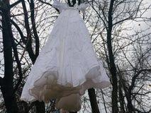 Den Dracula's brudklänningen arkivbild