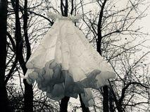 Den Dracula's brudklänningen fotografering för bildbyråer