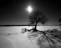Den dramatiska vintern landskap Arkivfoton