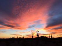 Den Dreamtime Cloudscape saguaroen står vakt Arizona Skyscape amerikansydväster Arkivfoto