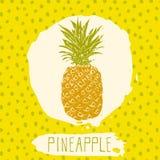 Den drog ananashanden skissade frukt med bladet på blå bakgrund med prickmodellen Klottra vektorananas för logo, märk, brännmärka Arkivbilder
