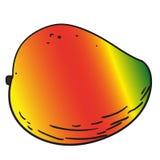 Den drog handen bär frukt isolerat - mango Royaltyfri Foto