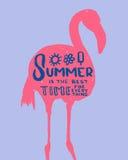 Den drog handen märka `-sommar är den bästa tiden för allt ` som inskrivas i flamingo Göra perfekt för ditt sommarbaner, affische Royaltyfria Foton
