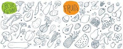 Den drog handen skissar för nya frukter och grönsaker illustration stock illustrationer