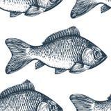 Den drog handen skissar havs- bakgrund Sömlös modell för vektor med fisken Tappningkarpillustration Vara kan bruk för meny stock illustrationer