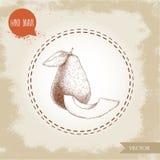 Den drog handen skissar sammansättning för avokadofrukter Hel avokado och skiva Royaltyfri Bild