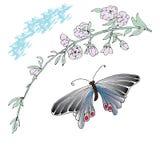 Den drog magnolia- och fjärilshanden skissade illustrationen Arkivfoton