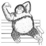 Den drog orangutanghanden skissade illustrationen Klotterdiagram Fotografering för Bildbyråer