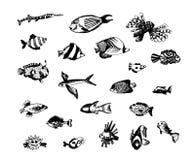 Den drog vektorhanden skissar av fiskillustration på vit bakgrund royaltyfri illustrationer