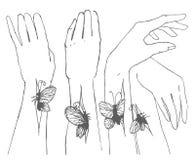 Den drog vektorhanden skissar av händer med fjärilsillustrationen royaltyfri illustrationer