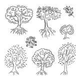 Den drog vektorhanden skissar av trädillustration på vit bakgrund stock illustrationer