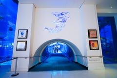 Den Dubai gallerialinterioren Royaltyfri Fotografi