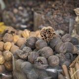 Den Dubai kryddan Souk eller den gamla Souken är en traditionell marknad i Duba Royaltyfri Foto