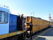 Den Dunedin järnvägen posterar Royaltyfri Fotografi