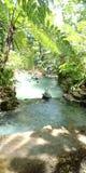 Den Eco floden parkerar lerig turism kyler arkivfoton