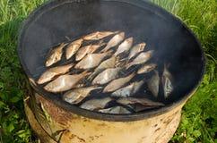 Den Ecologic fisken röker röker den rostiga trumman för huset Royaltyfri Bild
