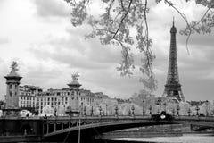Den Eiffeltorn- och Alexandre III bron i Paris, Frankrike royaltyfri foto