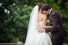 Den eleganta bruden kysser brudgummen Royaltyfria Bilder