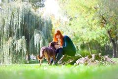Den eleganta kvinnan har gyckel med hennes stora hund i parkera Royaltyfri Foto