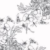 Den eleganta tappningvektorinbjudan med steg blommor stock illustrationer