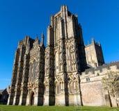 Den engelska gotiska domkyrkan väller fram Somerset, England Arkivfoto