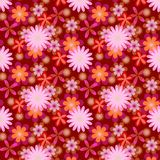Den enkelt sömlösa rosa färgen blommar på mörk bakgrund Fotografering för Bildbyråer
